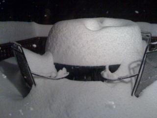 Snow Anyone?